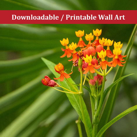 Bloodflowers and Palm Color Floral Nature Photo DIY Wall Decor Instant Download Print - Printable