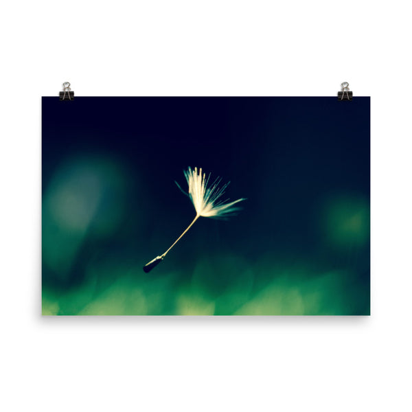 Blowing in the Wind Nature Photo Loose Unframed Wall Art Prints  - PIPAFINEART