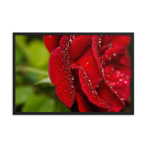 Bold and Beautiful Floral Nature Photo Framed Wall Art Print