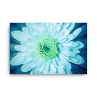 Brilliant Flower Floral Nature Canvas Wall Art Prints  - PIPAFINEART