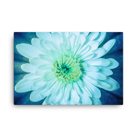 Brilliant Flower Floral Nature Canvas Wall Art Prints