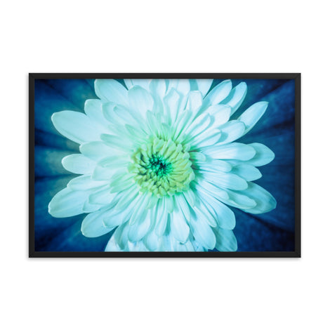Brilliant Flower Floral Nature Photo Framed Wall Art Print