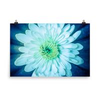 Brilliant Flower Floral Nature Photo Loose Unframed Wall Art Prints  - PIPAFINEART