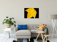 "Brilliant Yellow Nature / Botanical Photo Fine Art Canvas Wall Art Prints 24"" x 36"" / Fine Art Canvas - PIPAFINEART"