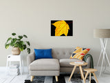 Nature Photography - Brilliant Yellow - Autumn Leaf - Fine Art Canvas - Home Decor Unframed Wall Art Prints