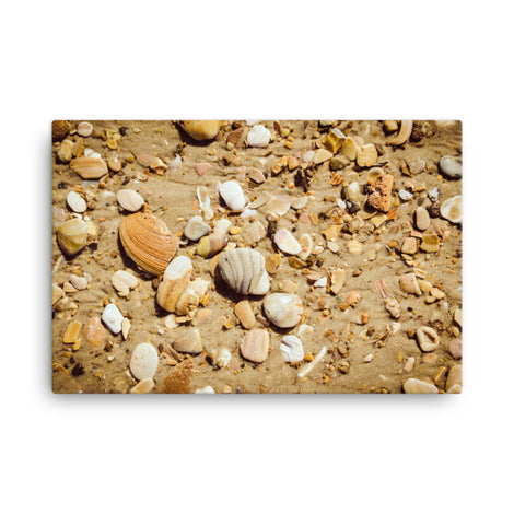 Broken Seashells and Sand Coastal Nature Canvas Wall Art Prints