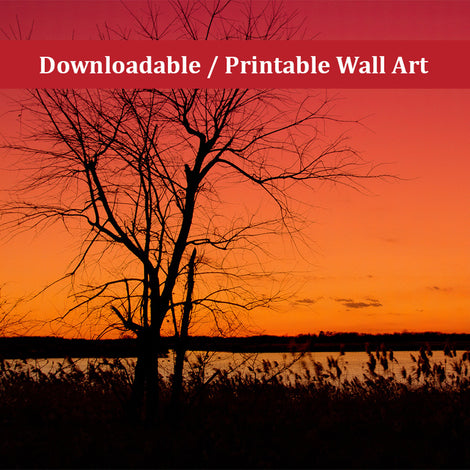 Burning Skies Landscape Photo DIY Wall Decor Instant Download Print - Printable