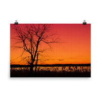 Burning Skies Landscape Photo Loose Wall Art Prints  - PIPAFINEART