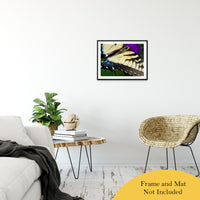 "Butterfly Wings Animal / Wildlife Photograph Fine Art Canvas & Unframed Wall Art Prints 20"" x 24"" / Classic Paper - Unframed - PIPAFINEART"
