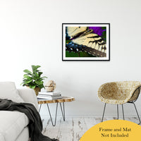 "Butterfly Wings Animal / Wildlife Photograph Fine Art Canvas & Unframed Wall Art Prints 24"" x 36"" / Classic Paper - Unframed - PIPAFINEART"