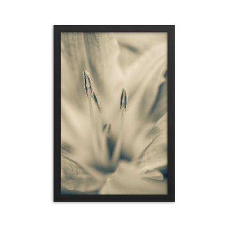 Calm Passions Floral Nature Photo Framed Wall Art Print