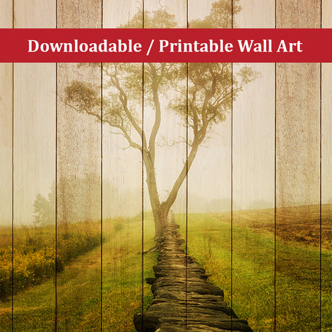 Faux Wood Calming Morning Landscape Photo DIY Wall Decor Instant Download Print - Printable