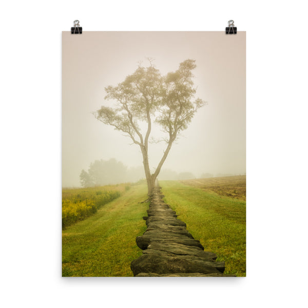 Calming Morning Landscape Photo Loose Wall Art Print Rural / Farmhouse / Country Style Landscape Scene (Unframed)