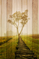 Faux Wood Calming Morning Landscape Photo Fine Art Canvas Wall Art Prints  - PIPAFINEART