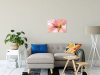 "Center of the Stargazer Lily Nature / Floral Photo Fine Art Canvas Wall Art Prints 20"" x 24"" / Fine Art Canvas - PIPAFINEART"