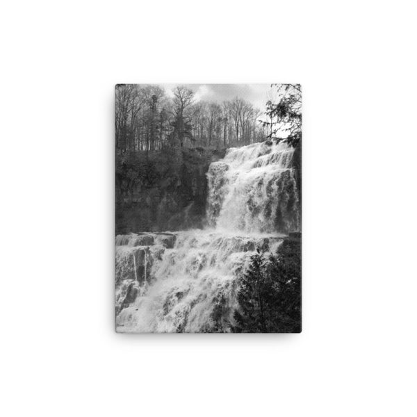 Chittenango Falls Black and White Canvas Wall Art Prints Rural / Farmhouse / Country Style Landscape Scene