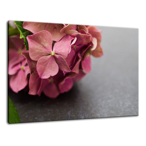 Close-Up Hydrangea on Slate Nature / Floral Photo Fine Art Canvas Wall Art Prints