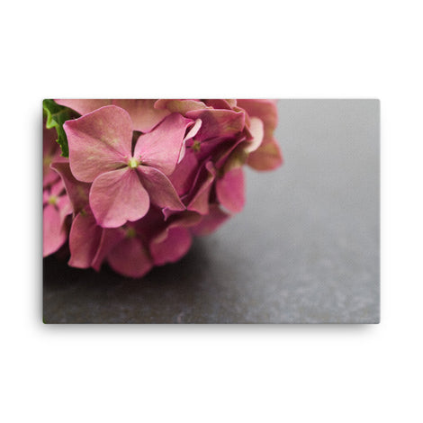 Close-Up Hydrangea on Slate Floral Nature Canvas Wall Art Prints