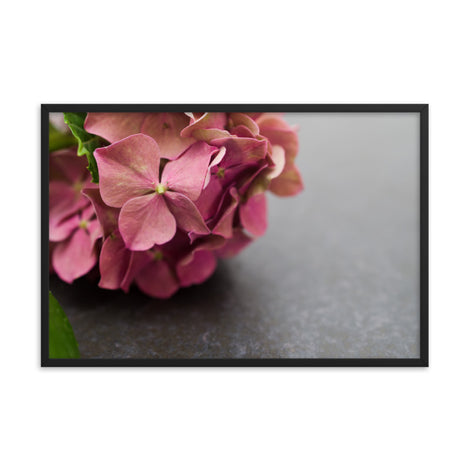 Close-Up Hydrangea on Slate Floral Nature Photo Framed Wall Art Print