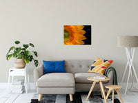 "Close-up Sunflower Nature / Floral Photo Fine Art Canvas Wall Art Prints 20"" x 30"" / Fine Art Canvas - PIPAFINEART"