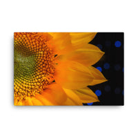 Close-up Sunflower Floral Nature Canvas Wall Art Prints  - PIPAFINEART