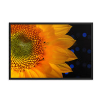 Close-up Sunflower Floral Nature Photo Framed Wall Art Print  - PIPAFINEART
