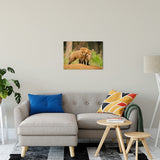 Close to You Animal / Wildlife Photograph Fine Art Canvas & Unframed Wall Art Prints - PIPAFINEART