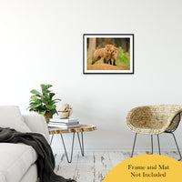 "Close to You Animal / Wildlife Photograph Fine Art Canvas & Unframed Wall Art Prints 20"" x 30"" / Classic Paper - Unframed - PIPAFINEART"