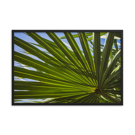 Colorized Wide Palm Leaves Botanical Nature Photo Framed Wall Art Print