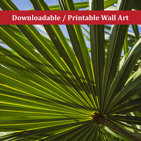 Colorized Wide Palm Leaves Botanical Nature Photo DIY Wall Decor Instant Download Print - Printable