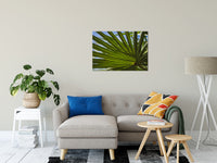 "Colorized Wide Palm Leaves Nature / Botanical Photo Fine Art Canvas Wall Art Prints 24"" x 36"" / Fine Art Canvas - PIPAFINEART"
