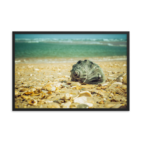 Daydreams on the Shore Coastal Nature Photo Framed Wall Art Print