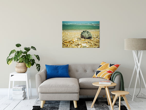 Nautical / Beach Nature Photograph Daydreams on the Shore - Fine Art Canvas - Home Decor Unframed Wall Art Prints