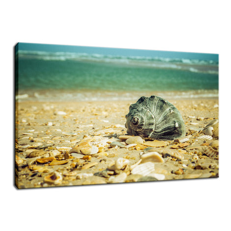 Daydreams on the Shore Nature / Coastal Photo Fine Art Canvas Wall Art Prints