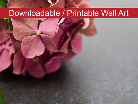 Close-Up Hydrangea on Slate Floral Nature Photo DIY Wall Decor Instant Download Print - Printable