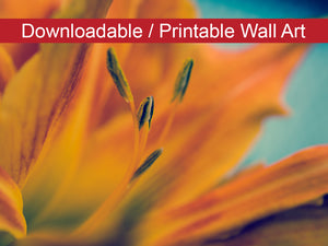 Digital Wall Art, Downloadable Print, Botanical Nature Photo Mystical Tiger Lily Wall Decor Instant -DIY Printable