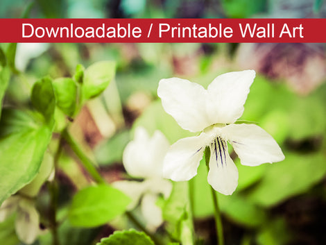 Tranquil China Violet DIY Wall Decor Instant Download Print - Printable Wall Art