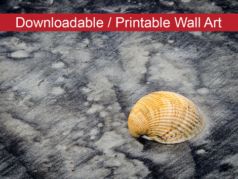 Black Sands and Seashell Coastal Nature Photo DIY Wall Decor Instant Download Print - Printable