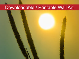 Digital Wall Art, Downloadable Print, Botanical Nature Photo Silhouettes in Sunset Wall Decor Instant -DIY Printable