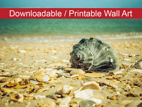 Daydreams on the Shore Coastal Nature Photo DIY Wall Decor Instant Download Print - Printable