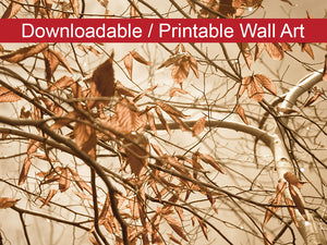 Digital Wall Art, Downloadable Prints, Botanical Nature Photograph Aged Winter Leaves - Wall Decor Instant Download Print - Printable