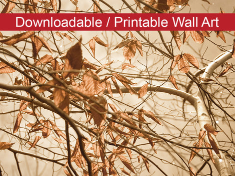 Aged Winter Leaves Botanical Nature Photo DIY Wall Decor Instant Download Print - Printable