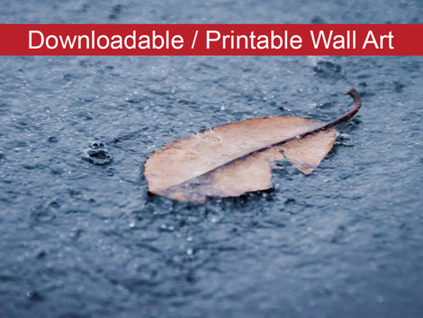 Fallen Leaf in the Rain Botanical Nature Photo DIY Wall Decor Instant Download Print - Printable