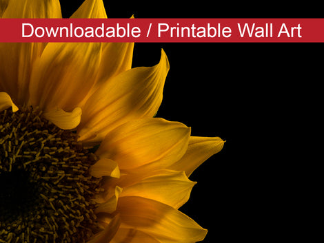 Sunflower in Corner DIY Wall Decor Instant Download Print - Printable Wall Art