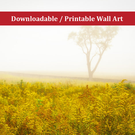 Dreams of Goldenrod and Fog Landscape Photo DIY Wall Decor Instant Download Print - Printable