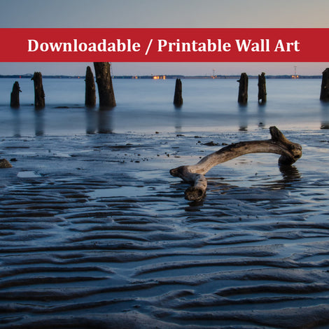 Driftwood and Sandbars Landscape Photo DIY Wall Decor Instant Download Print - Printable