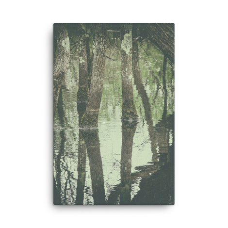Early Spring Reflections on the Marsh Botanical Nature Canvas Wall Art Prints