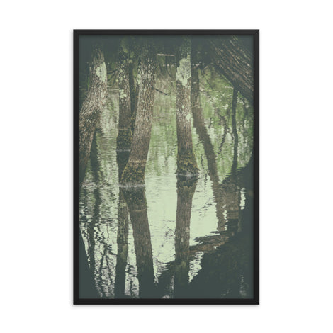Early Spring Reflections on the Marsh Botanical Nature Photo Framed Wall Art Print