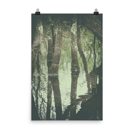 Early Spring Reflections on the Marsh Botanical Nature Photo Loose Unframed Wall Art Prints