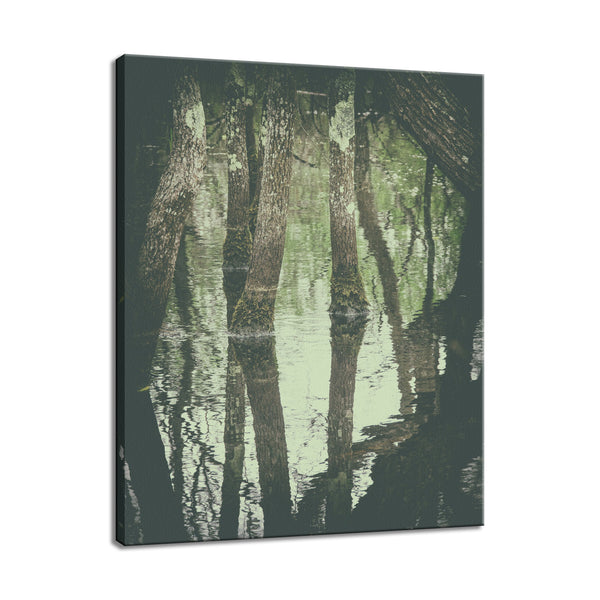 Early Spring Reflections on the Marsh Botanical / Nature Photo Fine Art & Unframed Wall Art Prints - PIPAFINEART